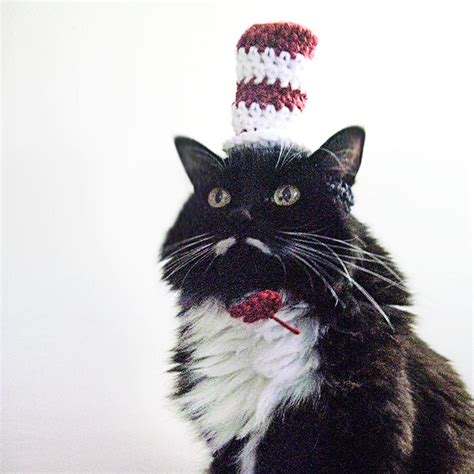Cat Hats by Crochet Hats For Cats 7 Crochet Patterns For Cat Hats