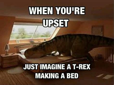 T Rex Bed Meme - cheer up meme google search funny pictures pinterest