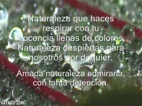 poemas sobre la naturaleza cortos poema naturaleza youtube