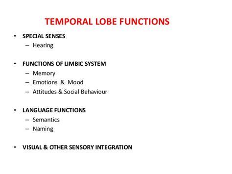 temporal lobe ppt
