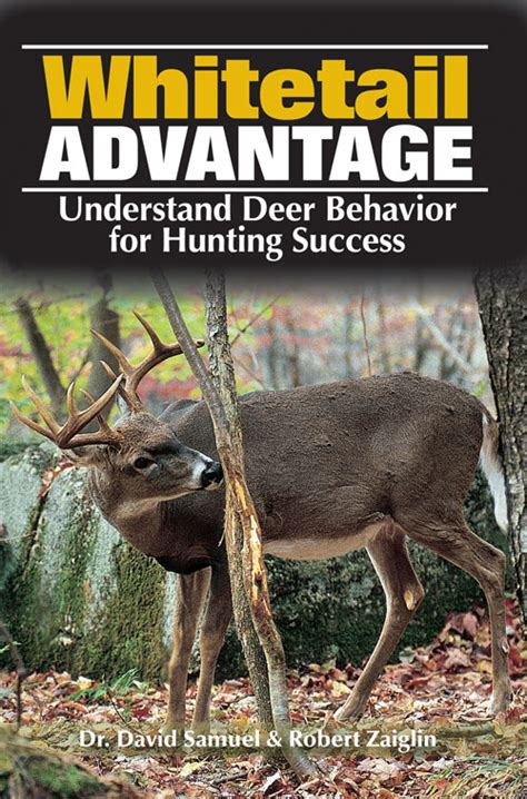 whitetail deer facts and strategies books book review whitetail advantage understanding deer