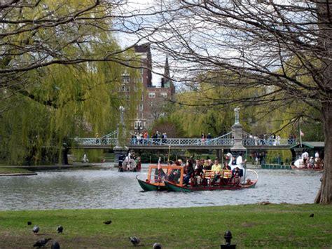 swan boats pics boston pics lee s blog