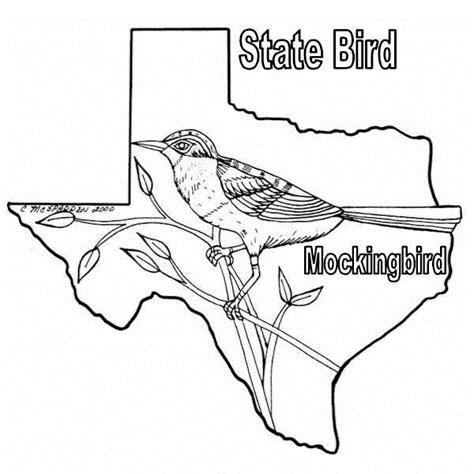 Texas Bird Coloring Page | texas coloring pages texas bob s texas coloring sheets