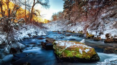 river rocks snow stones water trees winter photography