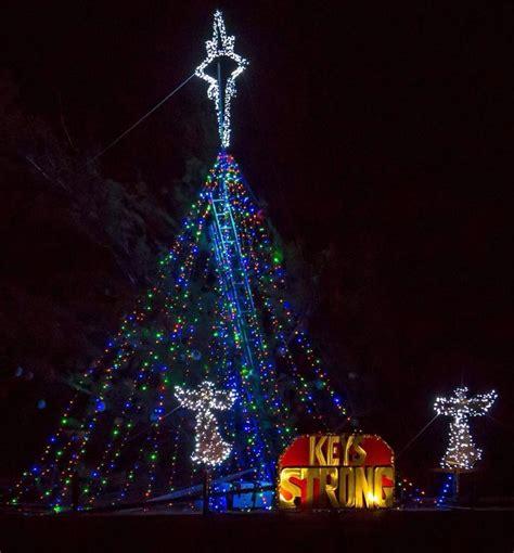 twelve volt christmas tree 12 volt led light set on green wire