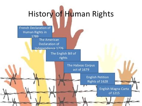 human rights sections section 7 human rights act human rights report on