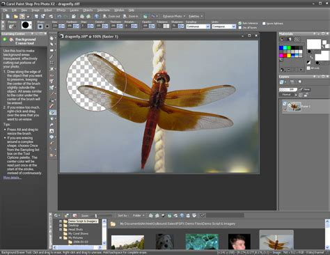 corel paint shop pro photo x2 america s best lifechangers