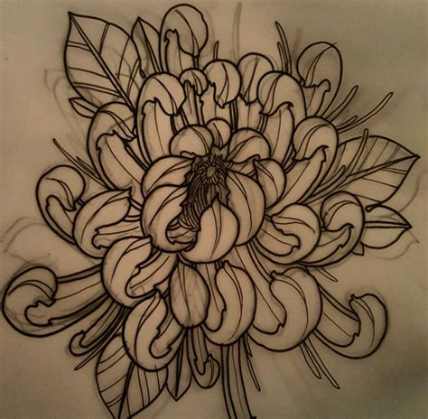 chrysanthemum flower tattoo drafts japanese designs