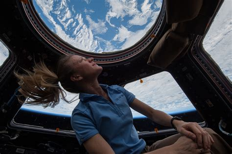 Iss Cupola file iss 37 nyberg in the cupola module jpg wikimedia commons