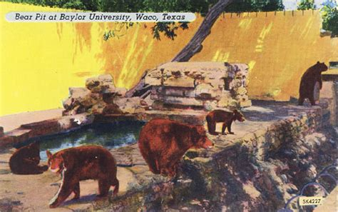 Pits Waco Tx And Lyn