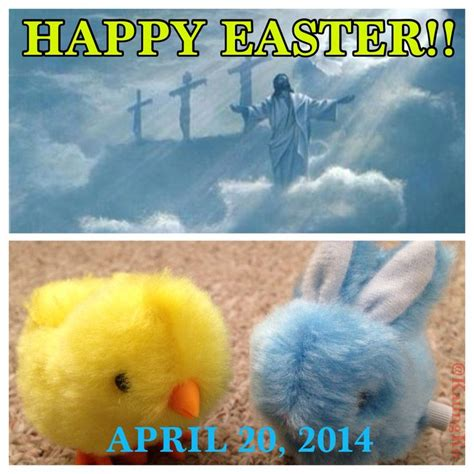 Happy Easter Everyone by 339 Best Quotes I Like Images On Relationships