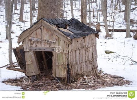 pictures of homemade dog houses dog house photo