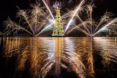 18 most beautiful christmas trees around the world