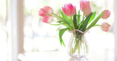 Mukena Bunga Tulip Green pin danielle d op tulip cottage cottages en tulpen