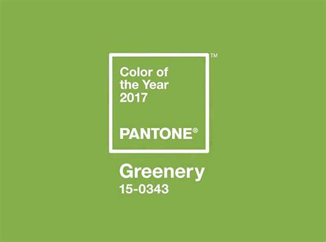 colors of the year the pantone color of the year 2017 greenery