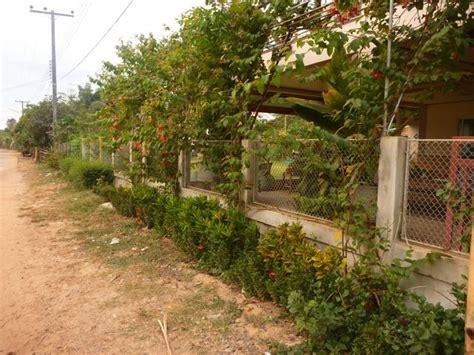 Thai Garden by Thailand Hedge Family In Rural Thailand Australia