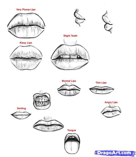 tutorial online c how to draw lips step by step mouth people free online