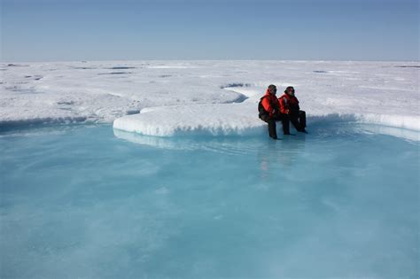 arctic sea arctic sea heading for one of lowest extents on record