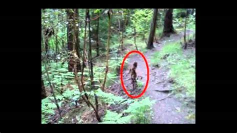 imagenes reales de duendes los duendes de verdan exixten youtube