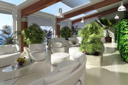 kletterpflanzen für innen officilia raumkunst pflanze hochwertige