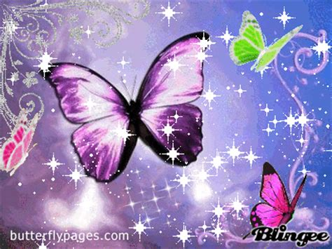 butterfly blingee picture 95776219 blingee com