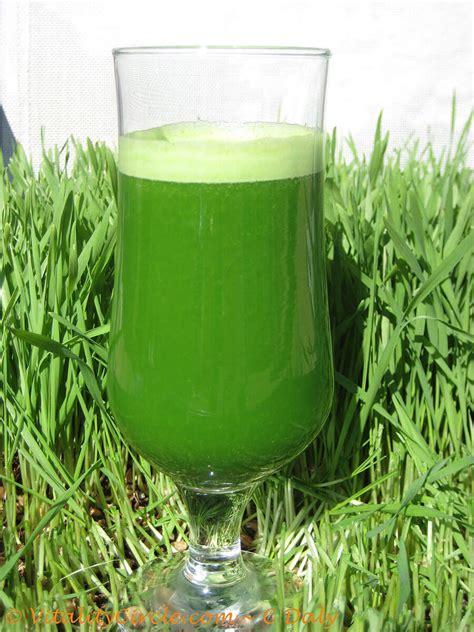 Juicer Wheatgrass how to juice wheatgrass using a vitamix dr sapna