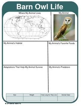 animal report template adaptations geography predators