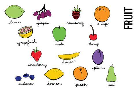 doodle fruit doodle fruit clip illustrations on creative market