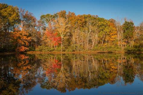 fall colors in virginia fall color in virginia 2018 my