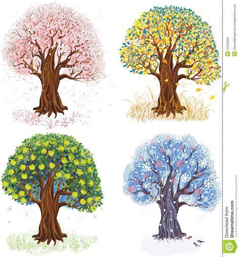 illustration of season trees four seasons stock vector image 41843020