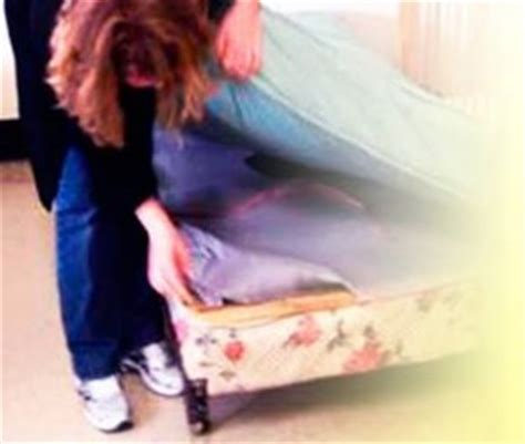 bed bugs inspection eight tips to keep bed bug off your apartment