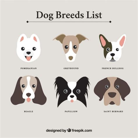 dog breeds list vector