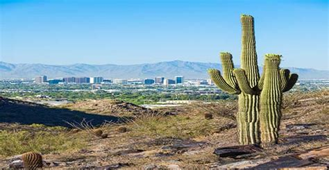 Arizona Records Access Arizona Access Business Records And Document Management Shredding Storage