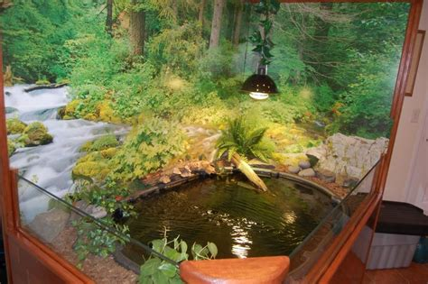 indoor pond indoor turtle pond love this it would be amazing for my