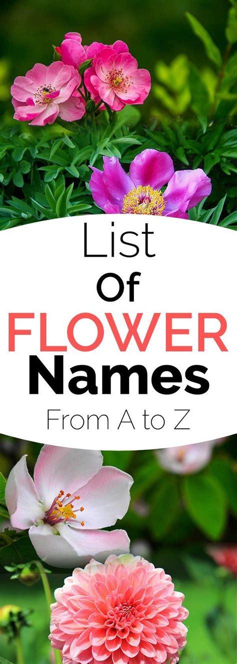 Garden Flower Names List Best 25 List Of Flower Names Ideas On Pink Wedding Decorations Light Pink Weddings