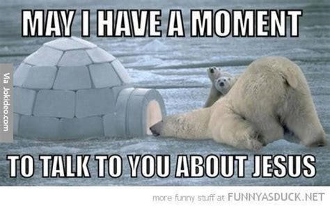 Polar Bear Meme - polar bear meme