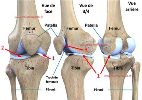 condropatia femoro tibiale interna lexique quot genou d 233 g 233 n 233 ratif quot usure arthrose du genou