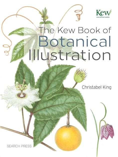 the kew book of the kew book of botanical illustration pre order now available mid august kew gardens shop