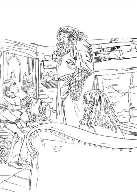 harry potter colouring book for grown ups 86 best images about harry potter on