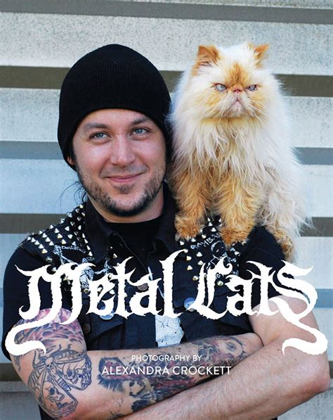 Metal Cats metal cats metal musicians pose with their cats