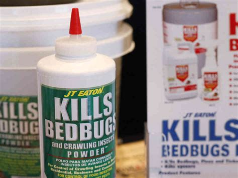 bed bugs pesticide kill bed bugs strategically using 5 brilliant ways 171 bed