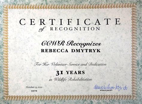 certificate for years of service template wildrescue s reunite wildlife