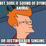 Justin Birber Meme - 17 best images about fuck you bieber and miley on