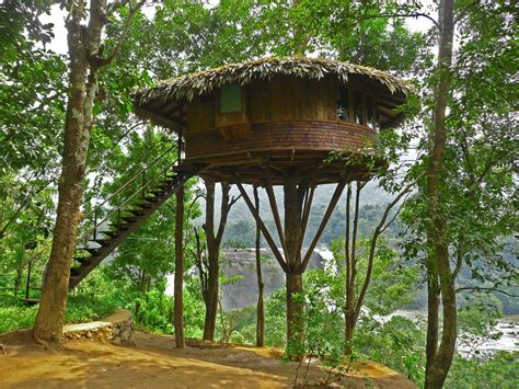 Tree Homes | beautiful tree houses prime home design beautiful tree
