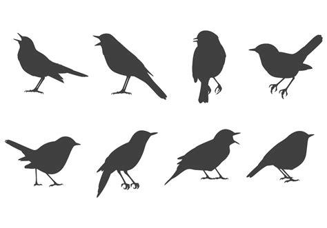 nightingale vectors   vectors clipart graphics vector art