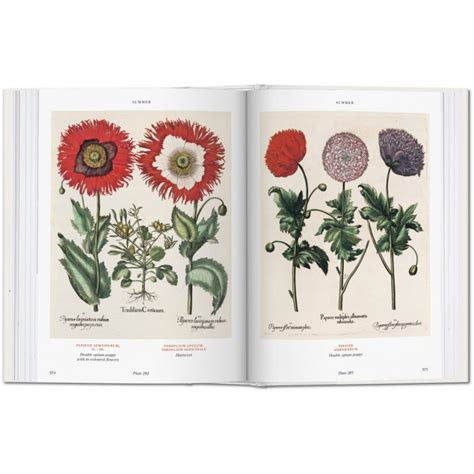 basilius besler s florilegium the book of plants taschen libri it