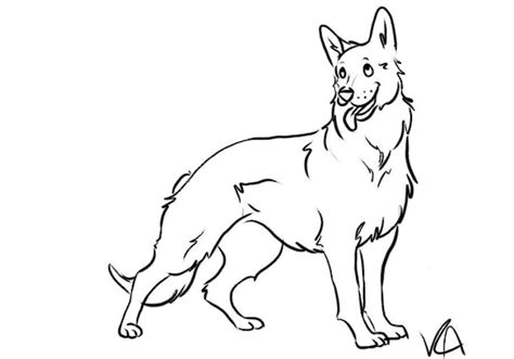 german shepherds colouring pages