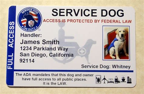 service id holographic service vest id badge card service animal id working pet 8 ebay