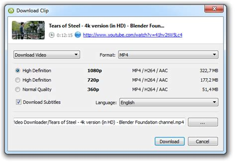 download youtube and subtitle how to download subtitles from youtube 4k download