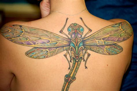 tattoo zone dragonfly my tattoos zone